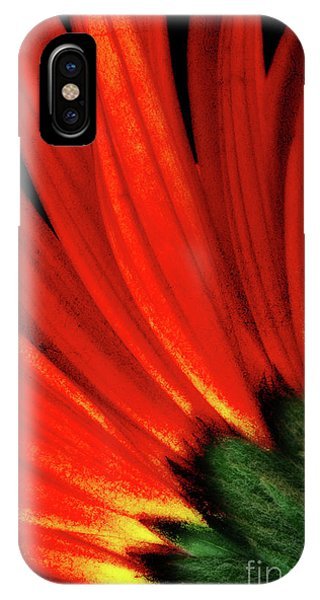 Daisy Aflame IPhone Case