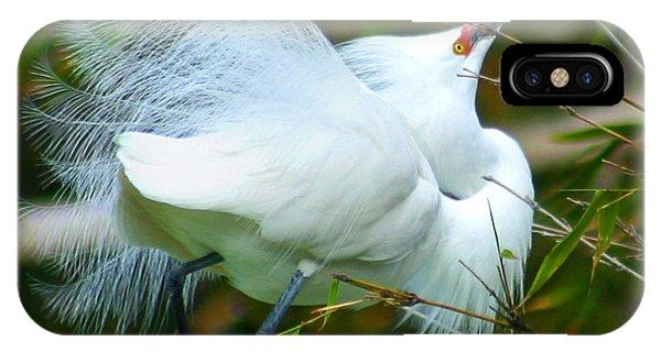 Dancing Egret IPhone Case