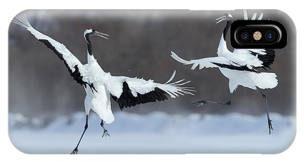 Dancing Pair Of Red-crowned Cranes With Phone Case by Ondrej Prosicky