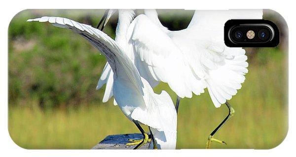 Dancing Snowy Egrets IPhone Case