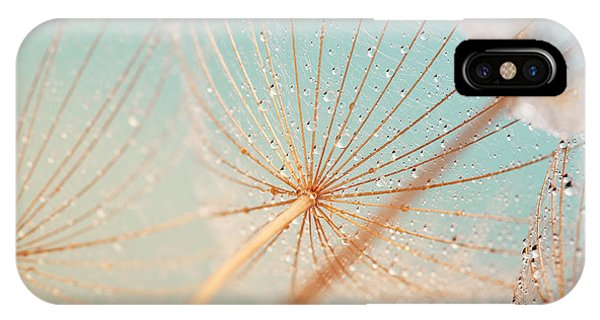 Water Droplets iPhone Case - Dandelion Flower With Water Drops by Aleksandar Grozdanovski
