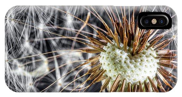 Seeds iPhone Case - Dandelion Seed Pod by Tom Mc Nemar