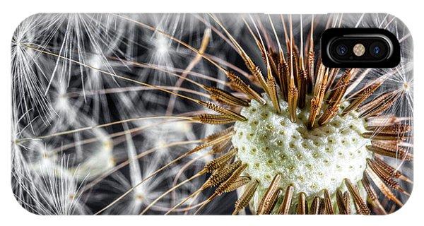 Plant iPhone Case - Dandelion Seed Pod by Tom Mc Nemar