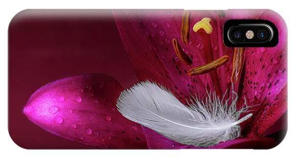 Stamen iPhone Case - Daylily With Feather by Tom Mc Nemar