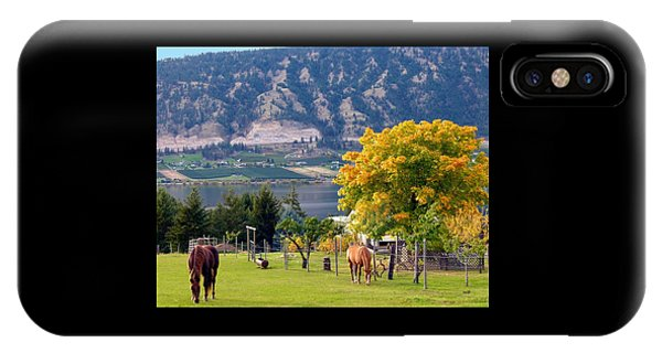 Oyama iPhone Case - Days Of Autumn 25 by Will Borden