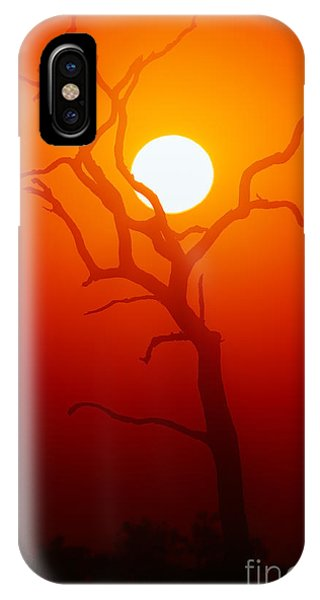 Dusk iPhone Case - Dead Tree Silhouette With Dusty Sunset by Johan Swanepoel