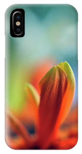 IPhone Case featuring the photograph Decision by Michelle Wermuth