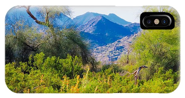Deep Desert Valley In A Sonoran Desert Spring IPhone Case
