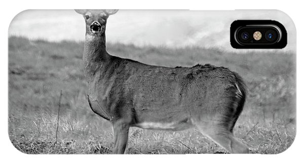 IPhone Case featuring the photograph Deer In Black And White by Angela Murdock