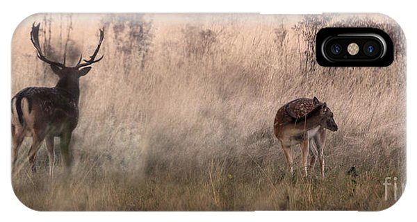 Deer In The Grasses IPhone Case