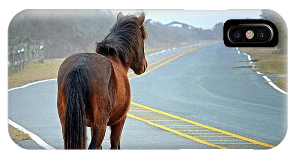 Delegats's Pride Looking For Visitors To Assateague Island IPhone Case