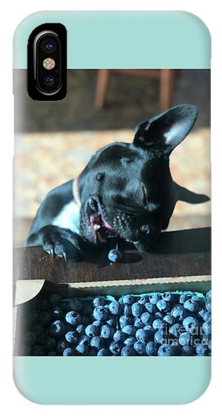 French Bull Dog iPhone Case - Delicious Sampling by Heather L Wright