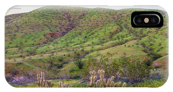 Cylindropuntia Bigelovii iPhone Case - Desert Bluebell Phacelia Campanularia by