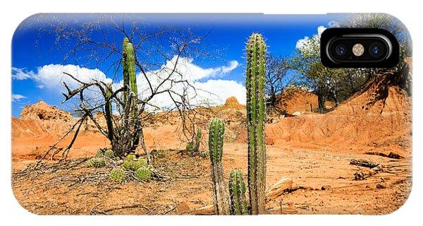 Red Rock iPhone X Case - Desert, Cactus In Desert, Tatacoa by Ilyshev Dmitry