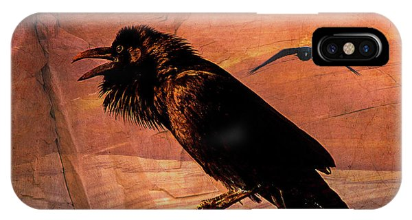 Desert Raven IPhone Case