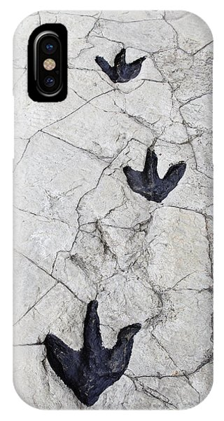Zoology iPhone Case - Detail Of Dinosaur Tracks In Spain by Sergio Foto