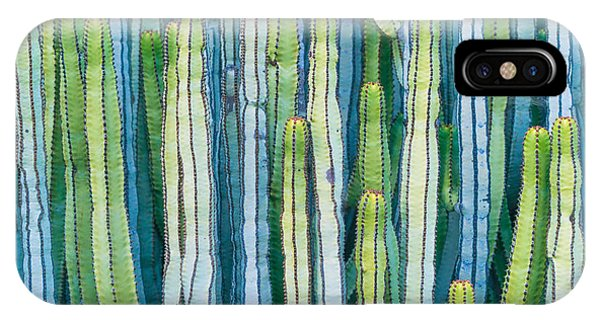 Hot iPhone Case - Detail View Of The Cardon Cactus In by Ed Reardon