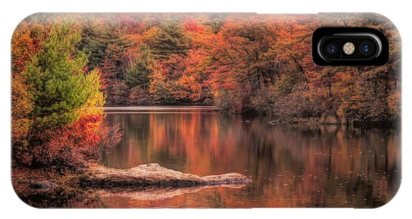 Digial Paint Of Birch Pond IPhone Case