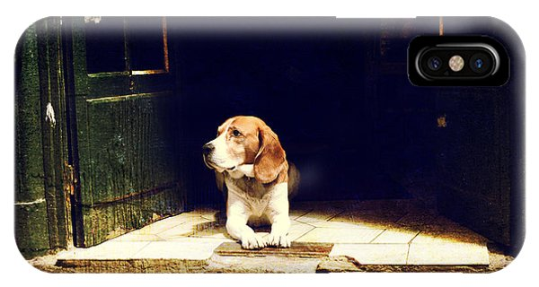 Iron iPhone Case - Dog Guarding The Entrance To The House by Okcamera