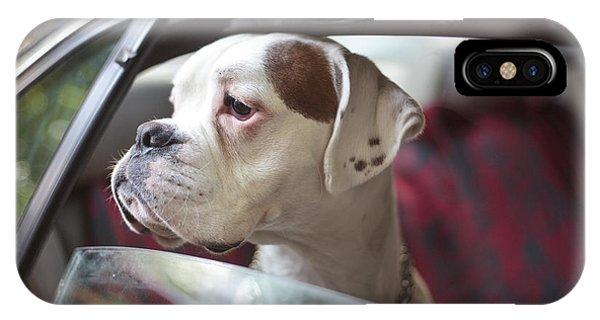Adorable iPhone Case - Dog In A Car by Aerogondo2