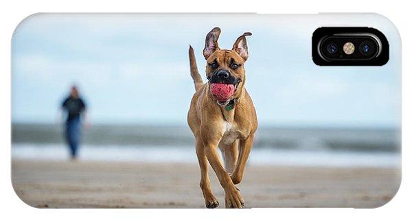 Purebred iPhone Case - Dog On The Beach by Rebeccaashworth