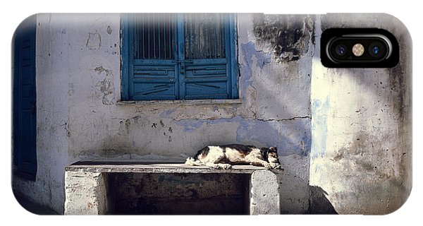 Dog Sleeps On A Bench Outdoor In Phone Case by Sergio Capuzzimati