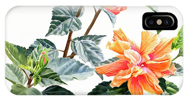 Hibiscus Flower iPhone Case - Double Orange Hibiscus With Buds by Sharon Freeman