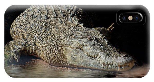IPhone Case featuring the photograph Dozy Crocodile by Elaine Teague