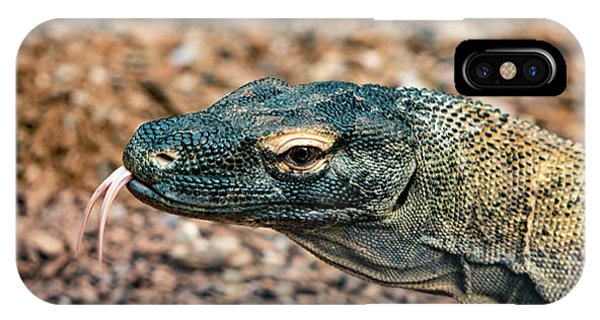 IPhone Case featuring the photograph Dragon With No Fire by Dheeraj Mutha