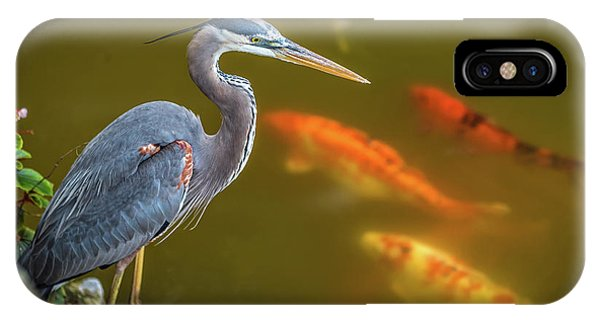 IPhone Case featuring the photograph Dreaming Tricolor Heron by Francisco Gomez