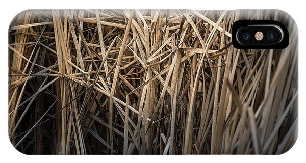 Dried Wild Grass II IPhone Case