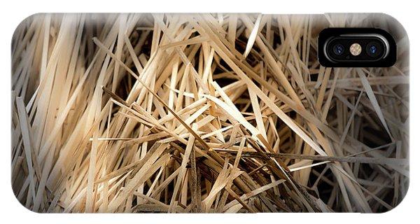 Dried Wild Grass I IPhone Case