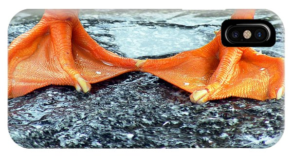 Texture iPhone Case - Duck Feet by Robin Keefe