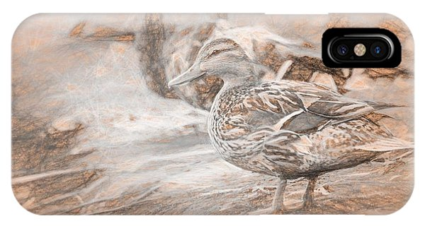 Ducks On Shore Da Vinci IPhone Case