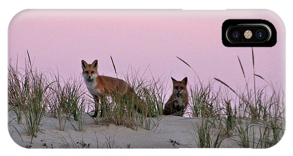 IPhone Case featuring the photograph Dune Foxes by Robert Banach