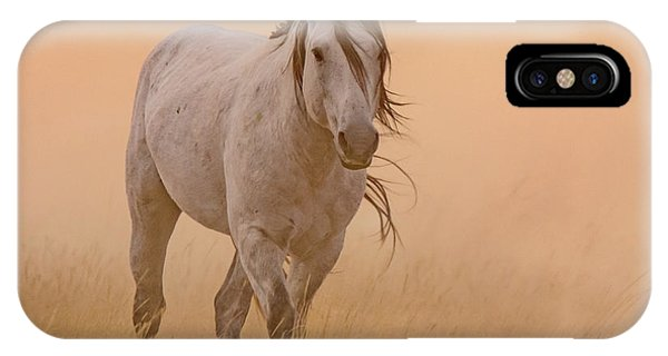 Dusty Evening IPhone Case