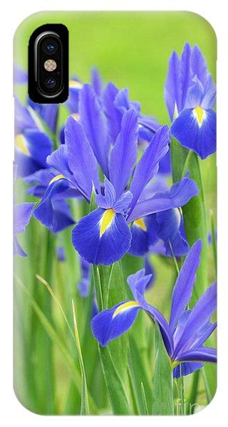 IPhone Case featuring the photograph Dutch Iris 'professor Blaauw' Flowers by Tim Gainey