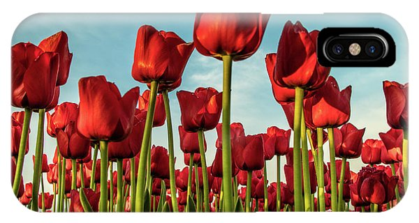 IPhone Case featuring the photograph Dutch Red Tulip Field. by Anjo Ten Kate