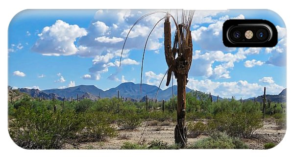 Dying Saguaro In The Desert IPhone Case