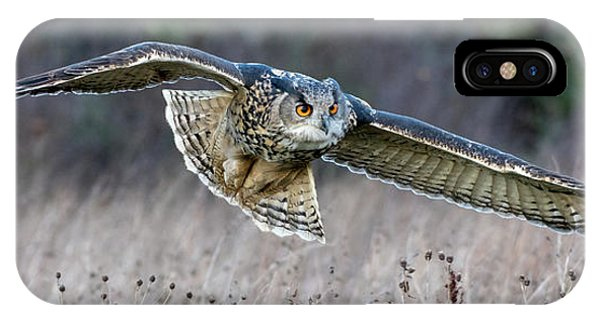 Eagle Owl Gliding IPhone Case