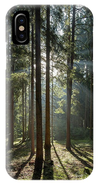iPhone Case - Early Morning In Coniferous Forest by Michal Boubin