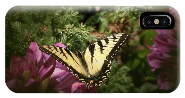 Easter Tiger Swallowtail On Rhododendron IPhone Case