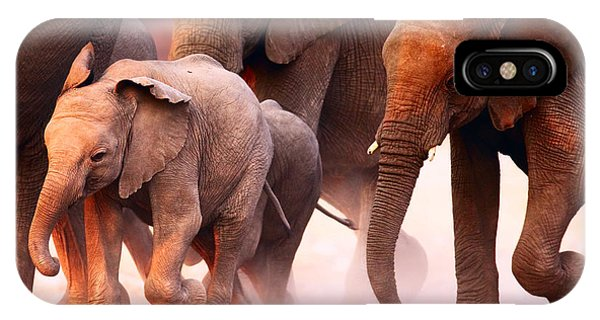 Mammal iPhone Case - Elephant Herd On The Run In Etosha by Johan Swanepoel