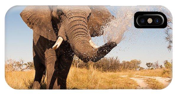 Delta iPhone Case - Elephant Spraying Water With His Trunk by Donovan Van Staden