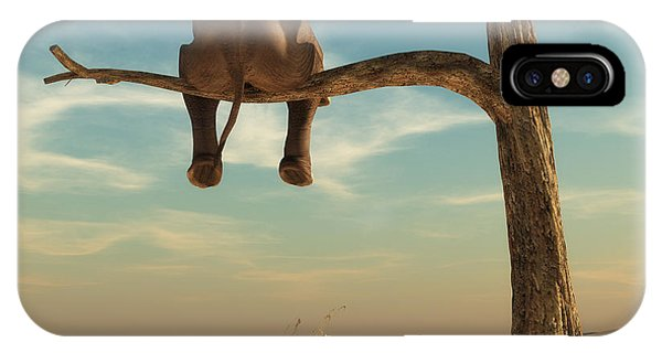 Harmony iPhone Case - Elephant Stands On Thin Branch Of by Orla