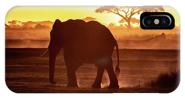 iPhone Case - Elephant Walking Through Amboseli At Sunset by Jane Rix