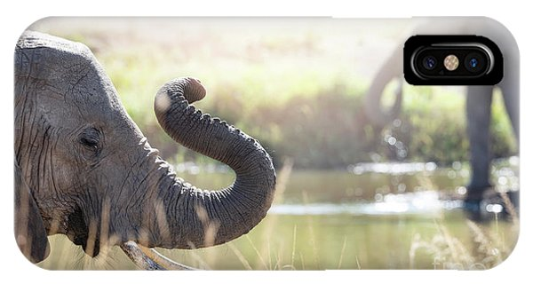 iPhone Case - Elephants At A Watering Hole by Jane Rix