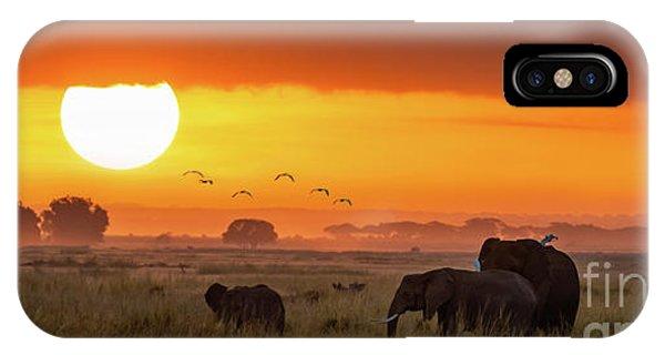 iPhone Case - Elephants At Sunrise In Amboseli, Horizonal Banner by Jane Rix