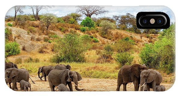 IPhone Case featuring the photograph Elephants Drill For Water by Kay Brewer