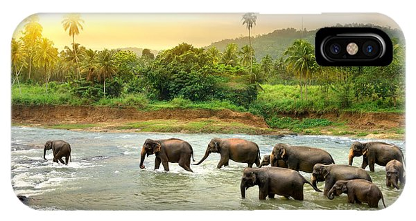 River Flow iPhone Case - Elephants In River by Givaga